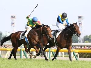 マカヒキ凱旋門賞挑戦決定、鞍上は外国人ジョッキー