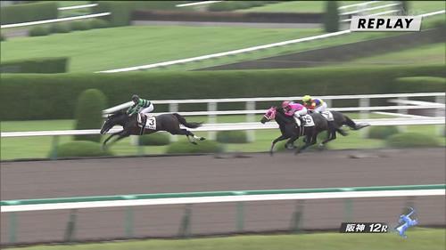 【画像】阪神最終R、セネッティがゴール前で何故か踏み切ってジャンプ