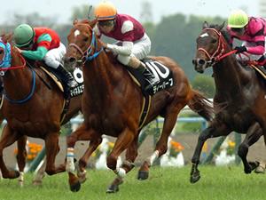 【函館スプリントステークス】難解混戦波乱の予感。今年はどの馬が詰まる?