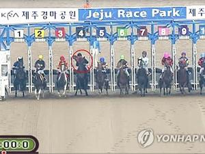【韓国競馬】暴力団が絡む八百長で騎手が15人逮捕