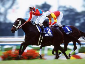 【訃報】GIを3勝の殖牝馬ファレノプシス死亡