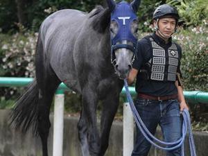 日米12冠配合の良血エイプリルミストが福島デビュー