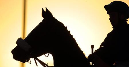 【スクープ】年内で引退を決めたベテラン騎手がいるとの情報
