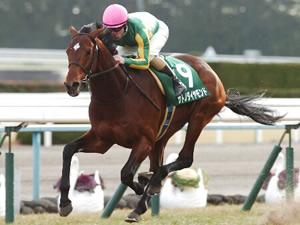 ダービー2着サトノダイヤモンドが帰厩、次走は神戸新聞杯