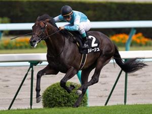 【悲報】ルルーシュ、繋養先が見つからず種牡馬を断念、乗馬へ