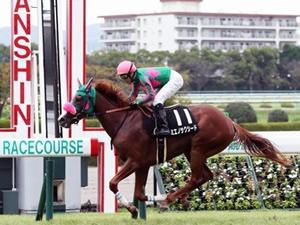 【上り馬】500万1000万を圧勝したミエノサクシード、次走は秋華賞