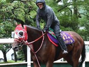 【毎日王冠】デムーロ、リアルスティールを大絶賛「スゴくいい馬。賢いし大好き。」