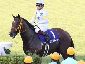 【スプリンターズS】藤岡師「ビッグアーサーはきれいな競馬をしてる。誰も開けてくれなかった」