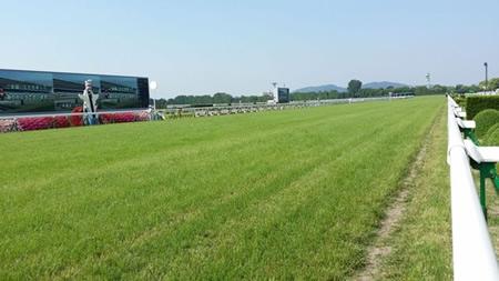 京都競馬、時計早すぎワロタ