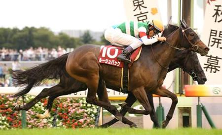 ルージュバック牝馬戦5戦5敗、牡馬混合戦6戦5勝