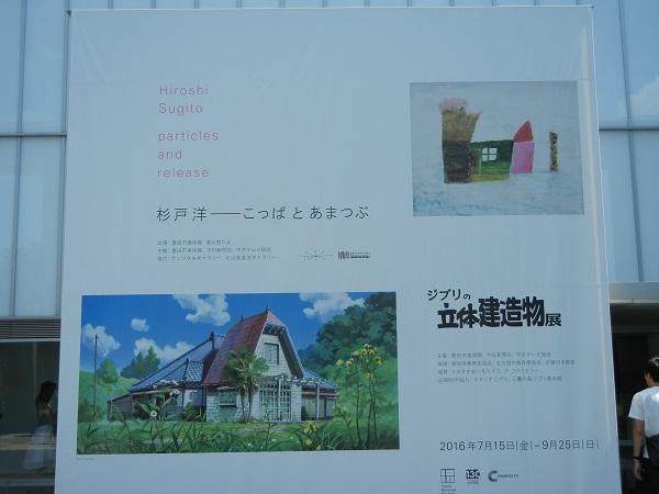 DSCN7579.jpg