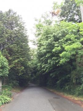 小川町 四津山神社コース1