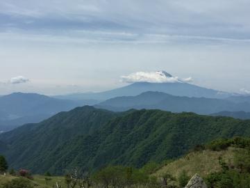 白谷ノ丸からの富士2