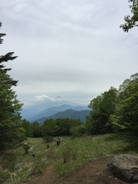 雁ヶ腹摺山からの富士