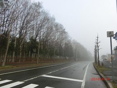 2016041401.jpg