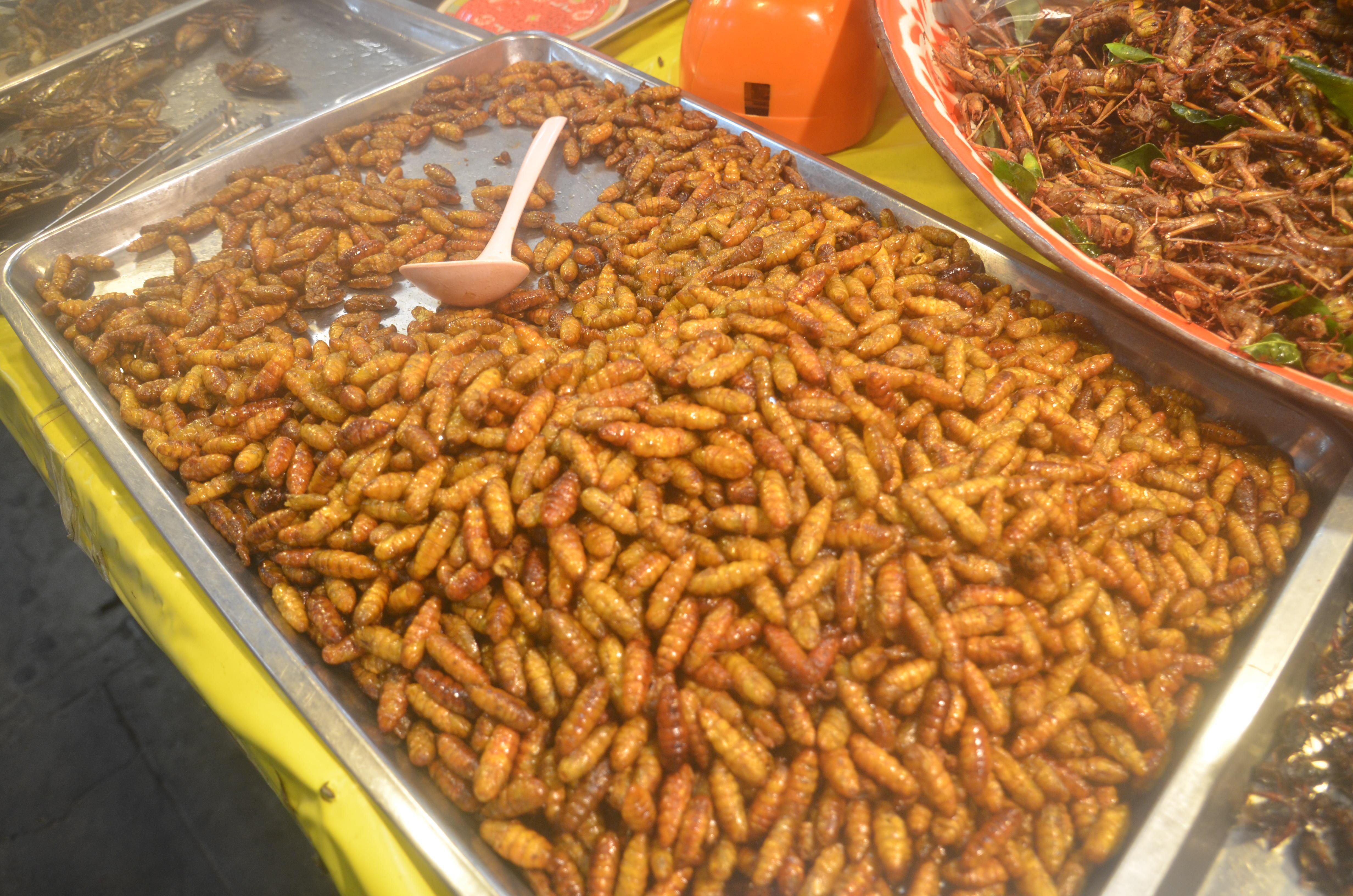 タイ料理たち3