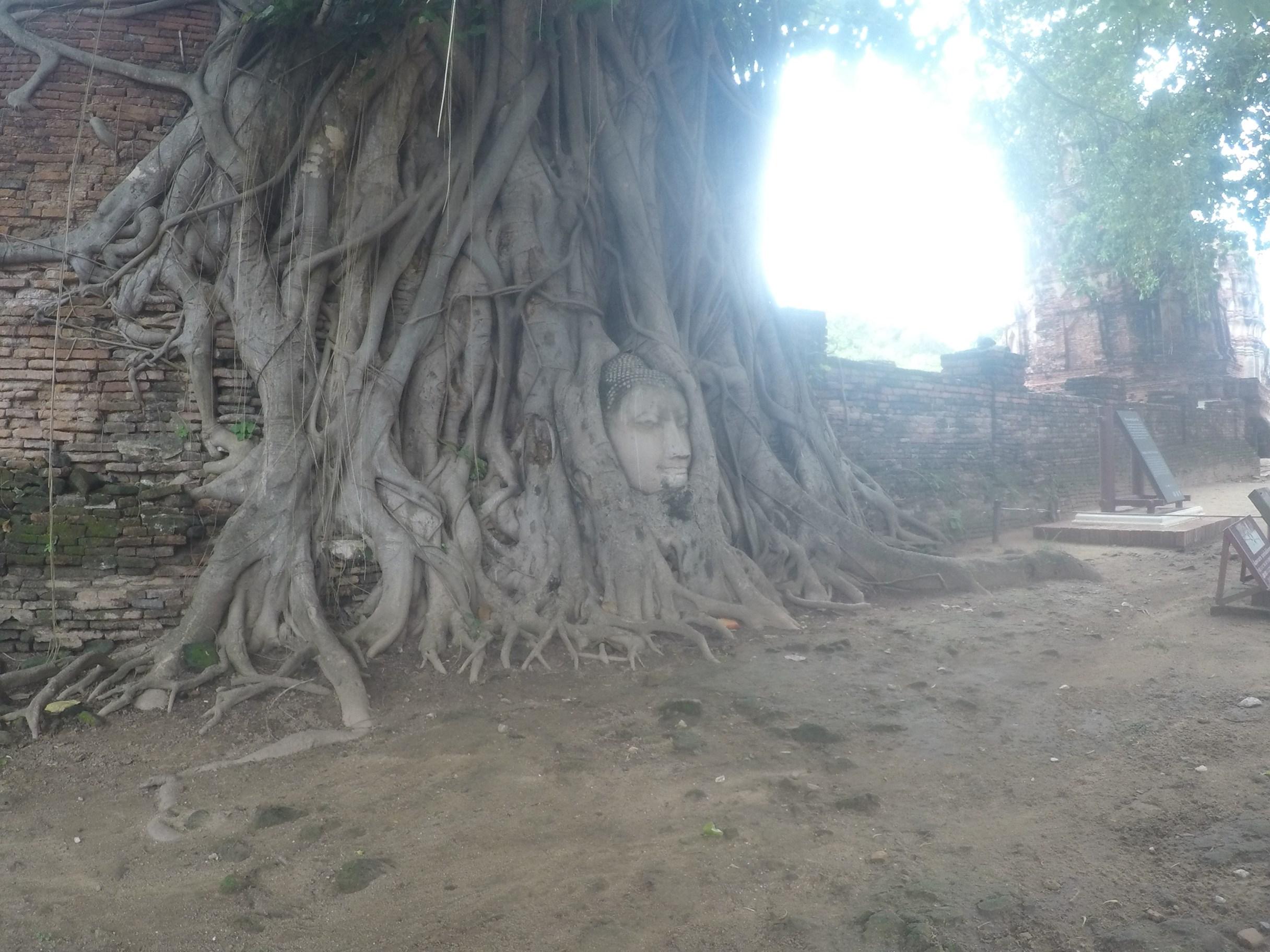 アユタヤ・仏像