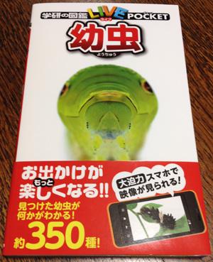 imomushizukan001.jpg