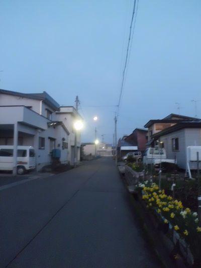 きらり (1)