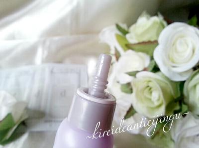 dprogramshiseido-012.png