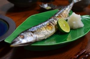 2016/10/15/生秋刀魚