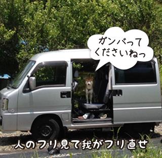 160607_4.jpg