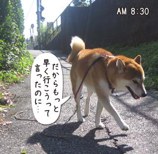 160810_1.jpg