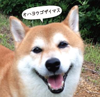 160911_1.jpg