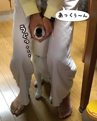 161005_1.jpg