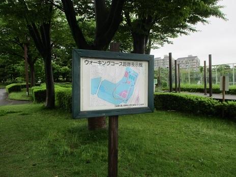 IMG_5391.jpg