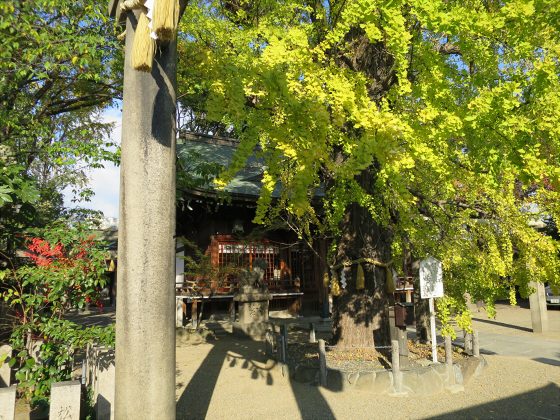 白山神社2016年5月-13