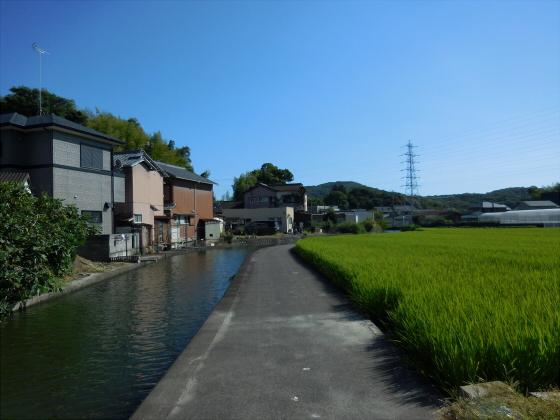 和歌山電鐵沿線の竈山神社06