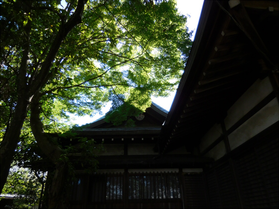 和歌山電鐵沿線の竈山神社12
