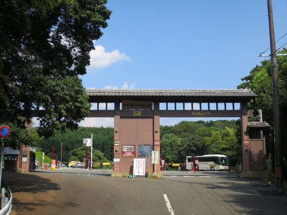 伏見桃山ジョー02
