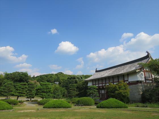 伏見桃山ジョー22