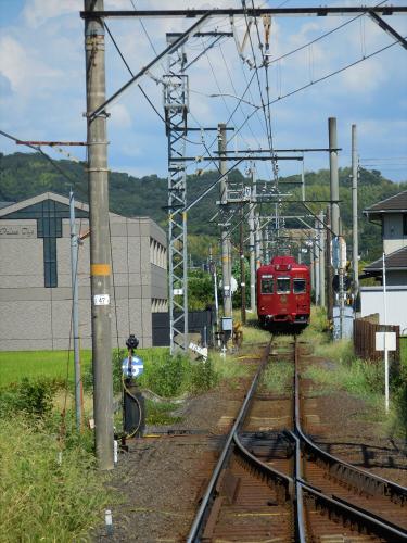 和歌山電鐵のニタマ駅長03