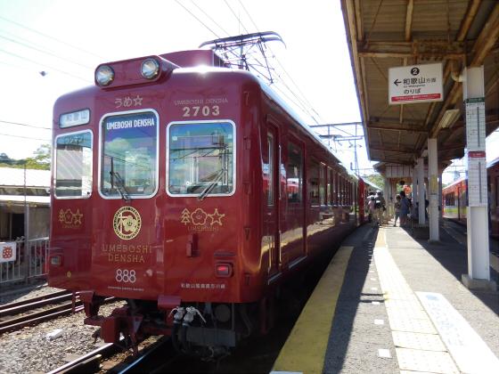 和歌山電鐵のニタマ駅長04