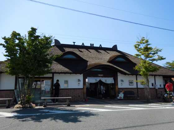 和歌山電鐵のニタマ駅長05