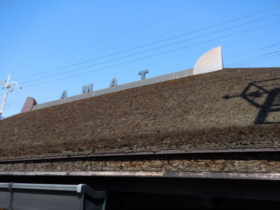 和歌山電鐵のニタマ駅長06