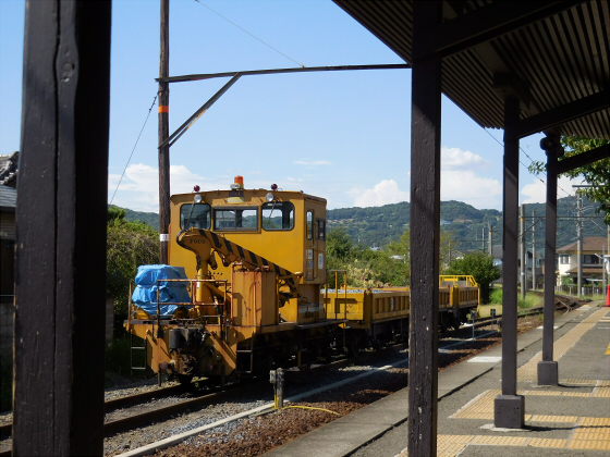 和歌山電鐵のニタマ駅長09