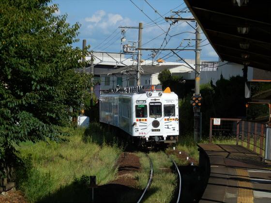 和歌山電鐵のニタマ駅長29