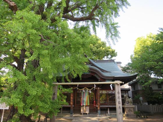 白山神社2016年5月-01