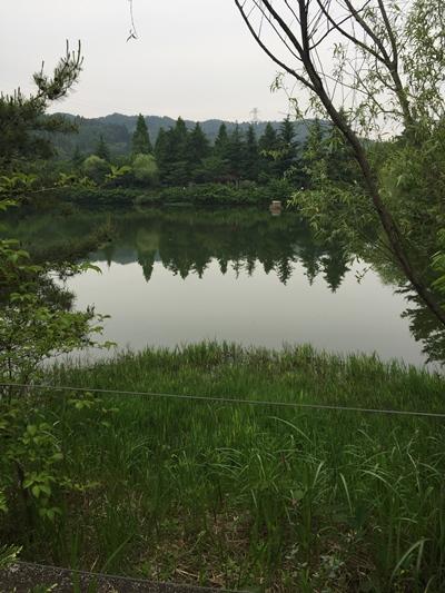 ローザンベリー池