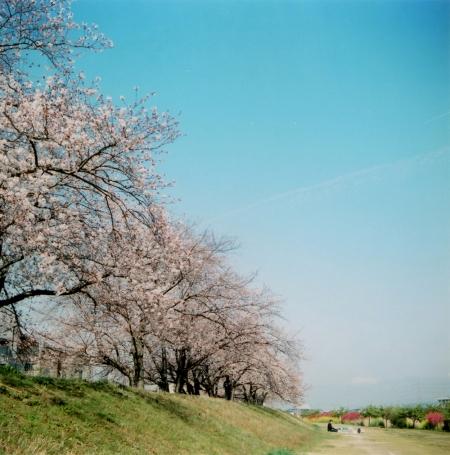 TOY-1348_Yashica.jpg