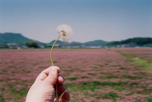 TOY-1432_Natura.jpg