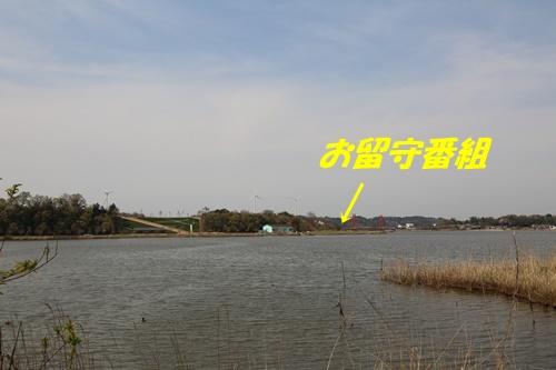 1V3A3849.jpg
