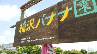 inazawabanana01.jpg