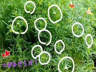 16-04-19-14-01-54-488_deco.jpg