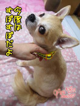2016blog0731_k_004.jpg