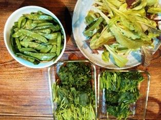 0523野菜
